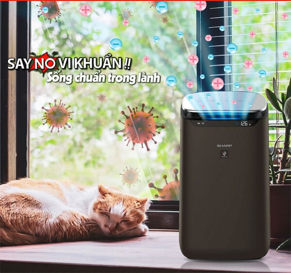 Máy lọc không khí hút lông chó mèo có thực sự hiểu quả